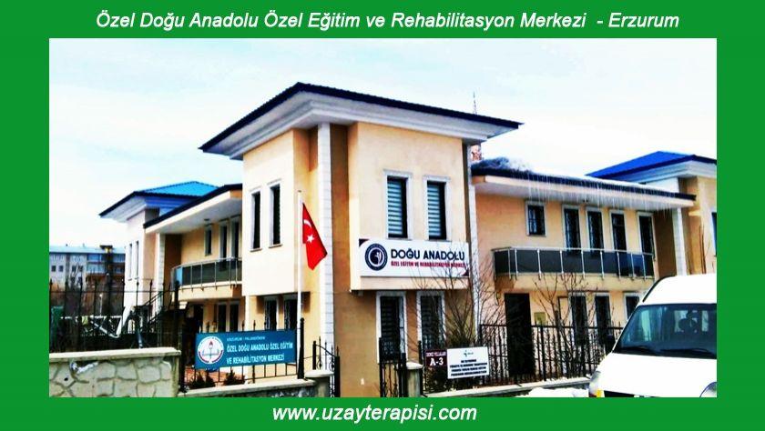 Doğu Anadolu Özel Eğitim ve Reh. Merkezi